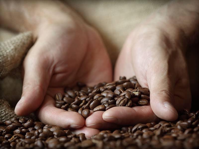 Roast Coffees